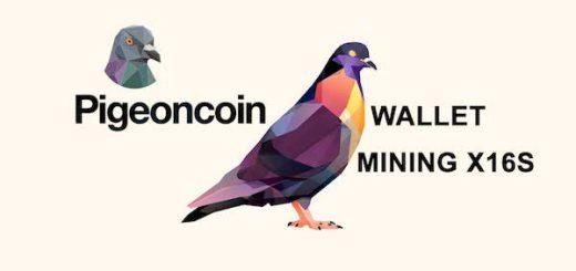 Pigeoncoin چیست؟