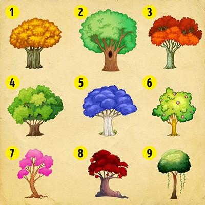 روانشانسی درخت