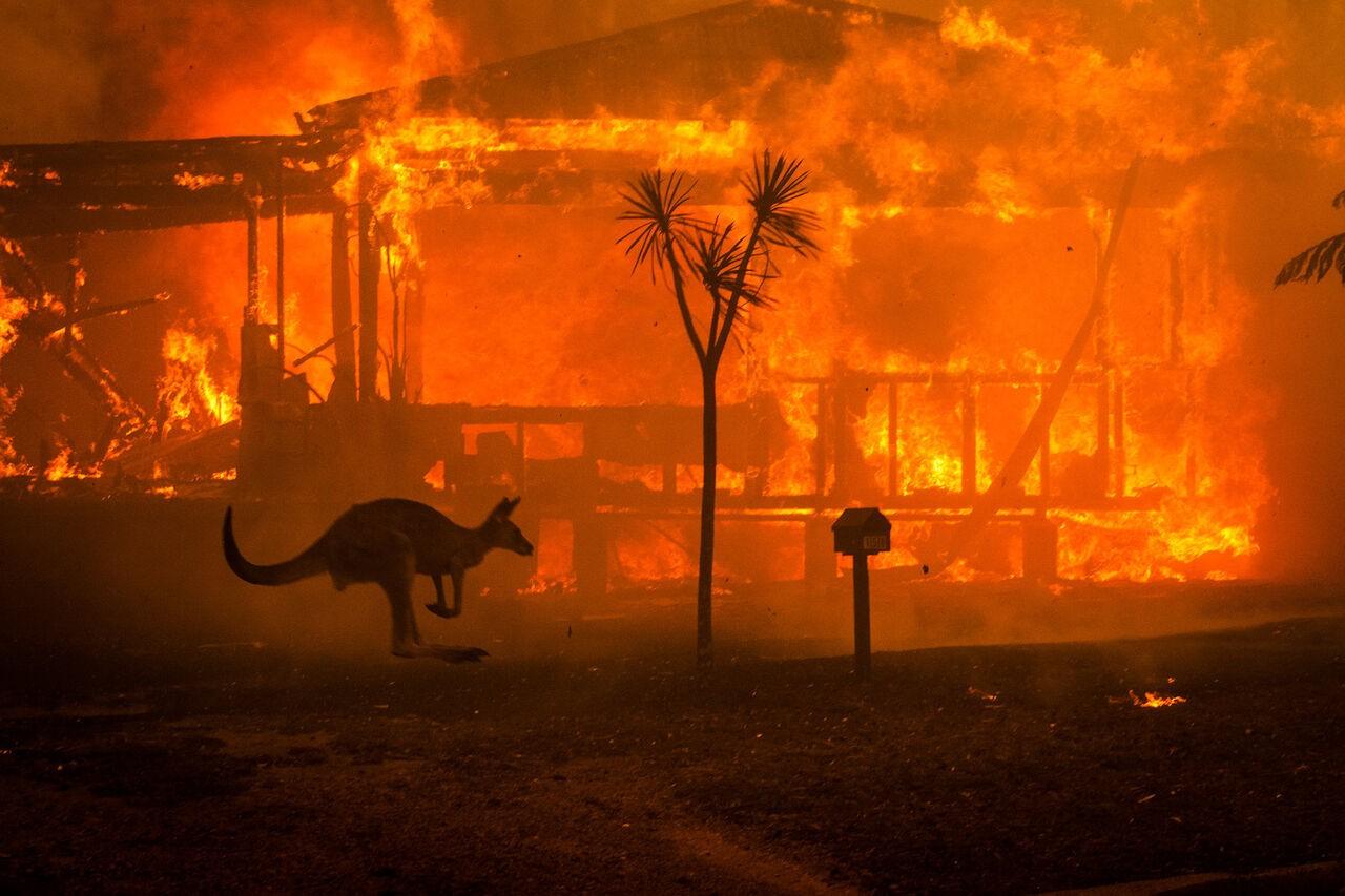 آتش سوزی سال ۲۰۲۰ استرالیا